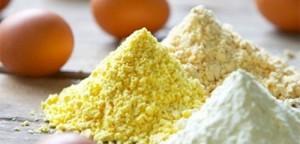 egg powder 1