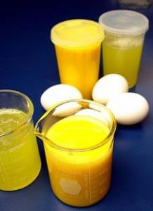 liquid egg products